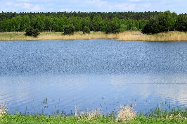 4 najlepsze kąpieliska i miejsca nad wodą w okolicach Krakowa